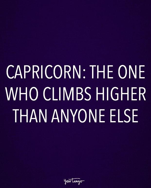 capricorn zodiac signs in one sentence