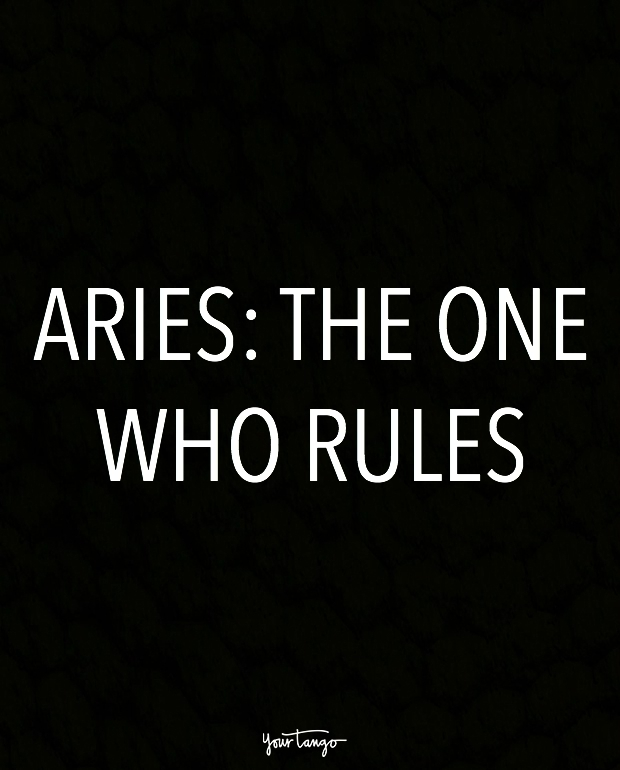aries zodiac signs in one sentence