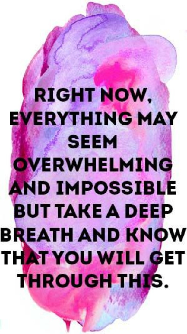taurus never give up motivational quotes zodiac signs
