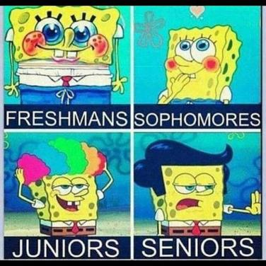 50 best spongebob memes epic jokes of all time yourtango