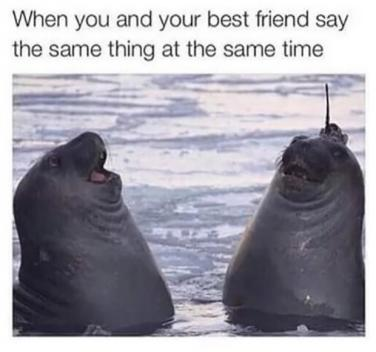 50 Best Friend Memes And Quotes For Friendship Day 2018 To Share On
