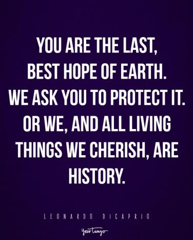 Environment Quotes Inspiration 48 Inspirational Quotes About The Environment And The Importance Of