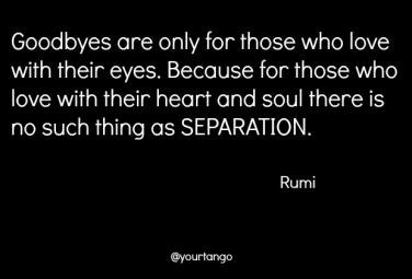 20 Rumi Love Quotes That Are Poignant And Crazy Beautiful Kathryn