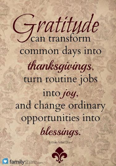 60 Best Gratitude Quotes And Thanksgiving Memes To Share On Social Beauteous Quotes Gratitude