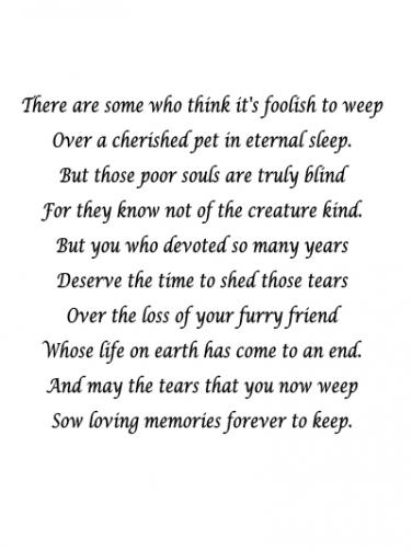 7 Sympathy Quotes To Help Cope With Death Of A Pet Yourtango