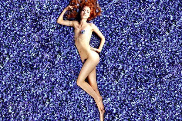 Lilac lady 10.