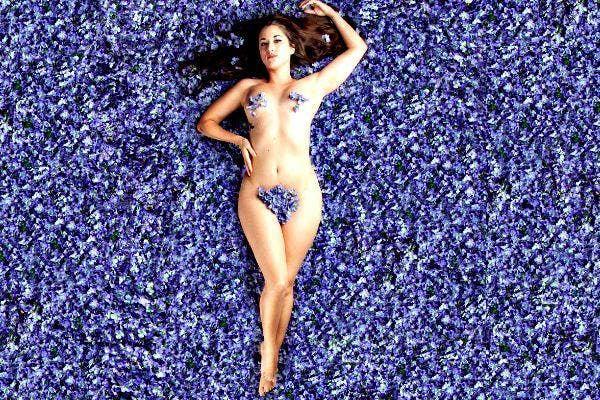 Lilac lady 11.