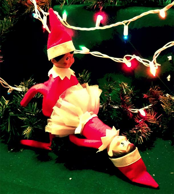 elf on the shelf kama sutra
