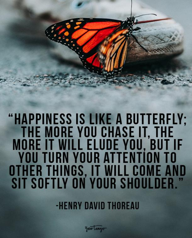 Happiness is like a butterfly; the more you chase it, the more it will elude you, but if you turn your attention to other things, it will come and sit softly on your shoulder. Henry David Thoreau