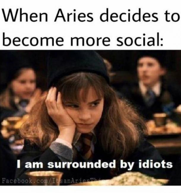 12 Best Aries Memes And Quotes That Describe This Zodiac