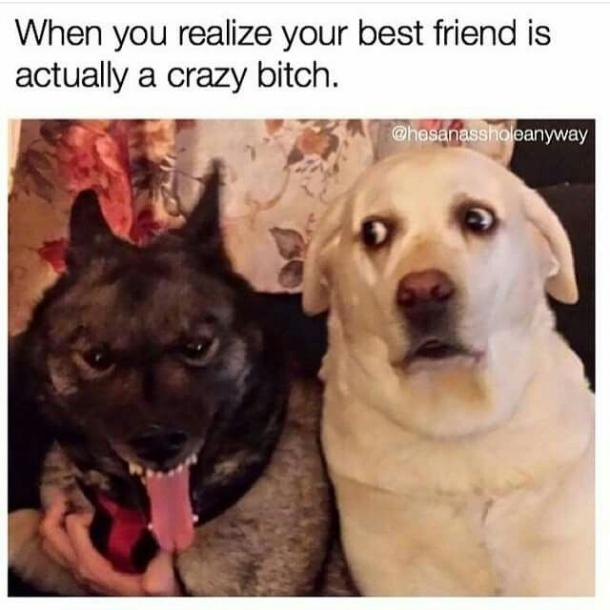 friend25 30 best friend memes and quotes for friendship day 2017 to share