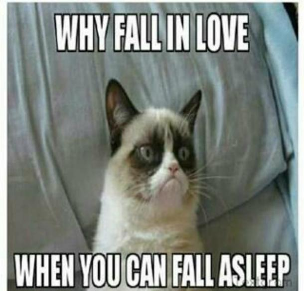 grumpycat15 21 best grumpy cat memes and funny quotes about love & life