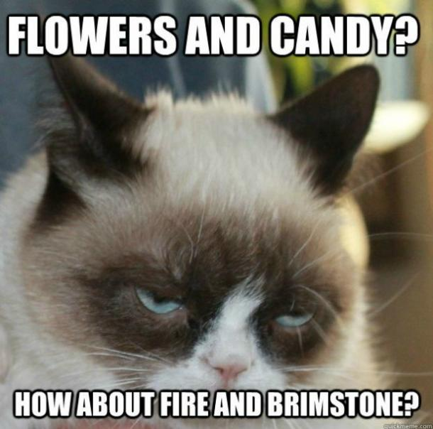 grumpycat19 21 best grumpy cat memes and funny quotes about love & life yourtango