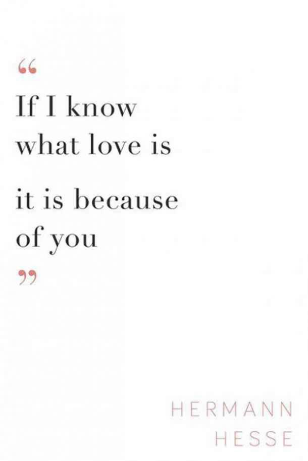 If I know what love is it is because of you. Hermann Hesse