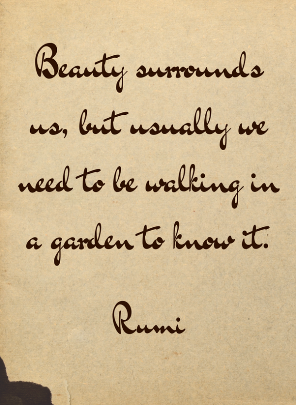 rumi quote on beauty