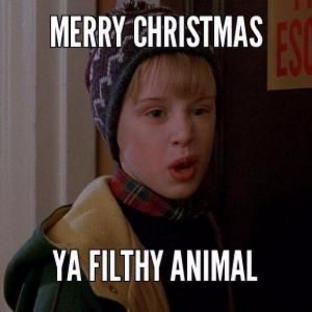 funny Christmas memes & quotes