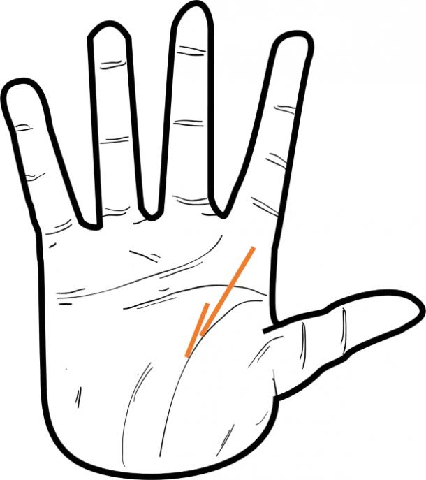 If you're wondering how to find your soulmate, or how to know if he's the one, you can try using palmistry, or palm reading, to figure it out.