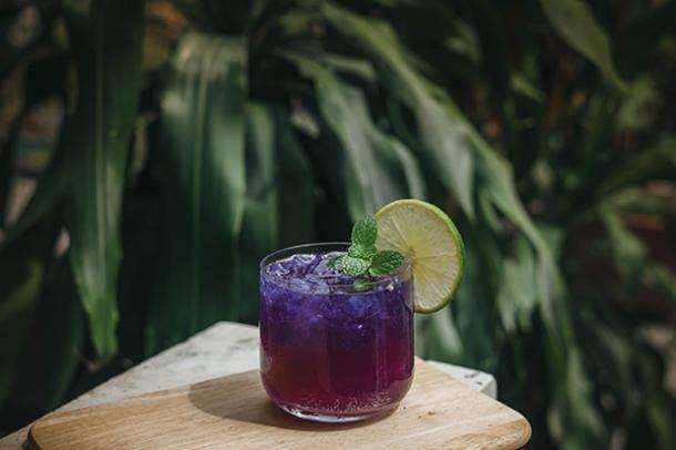 Blueberry Lavender Vodka Spritzer BBQ Cocktail Drink Recipes