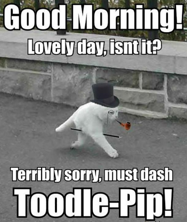 12 Funny Good Morning Memes & Peppy Quotes About Morning