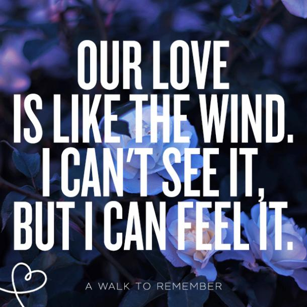 perfect quotes about love falling in love quotes