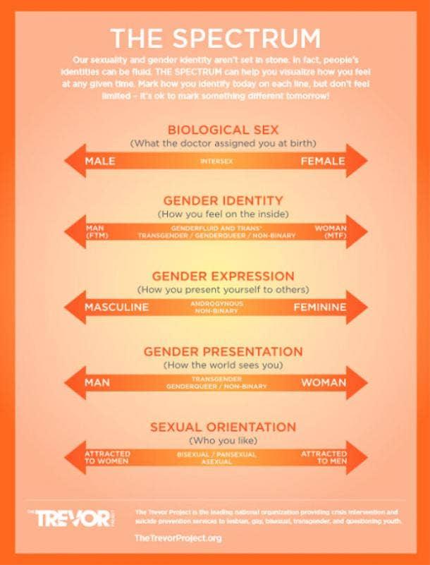 Gender & Sexuality Spectrum