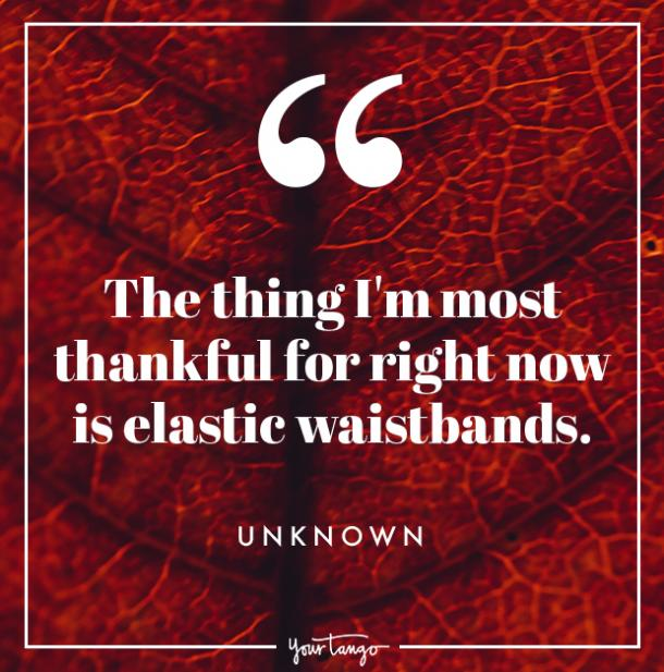 elastic waistbands Thanksgiving quote