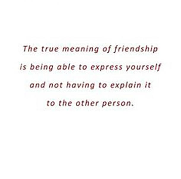 The true meaning of friendship is being able to express yourself and not having to explain it to the other person.