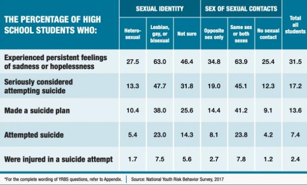 LGBTQ youth & suicide risk