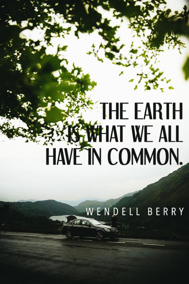Wendell Berry environment quote