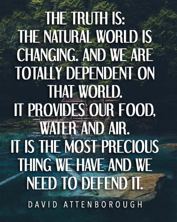 Image result for quotes about the environment