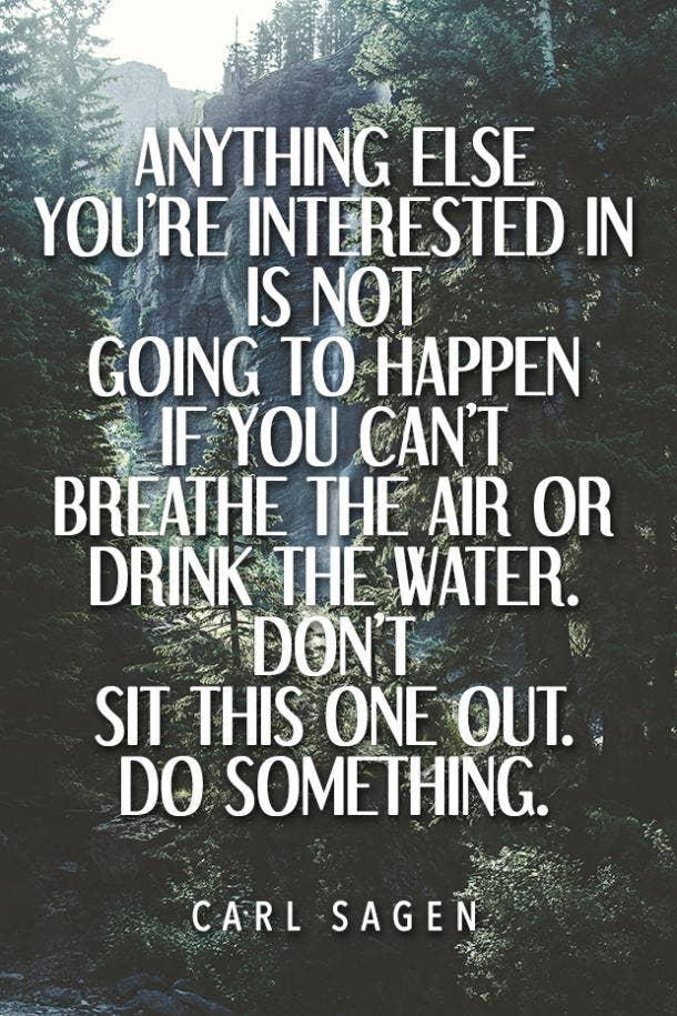 Carl Sagen environment quote