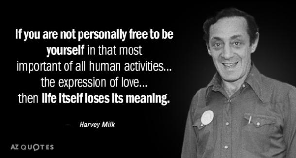 pics of harvey milk gay activist