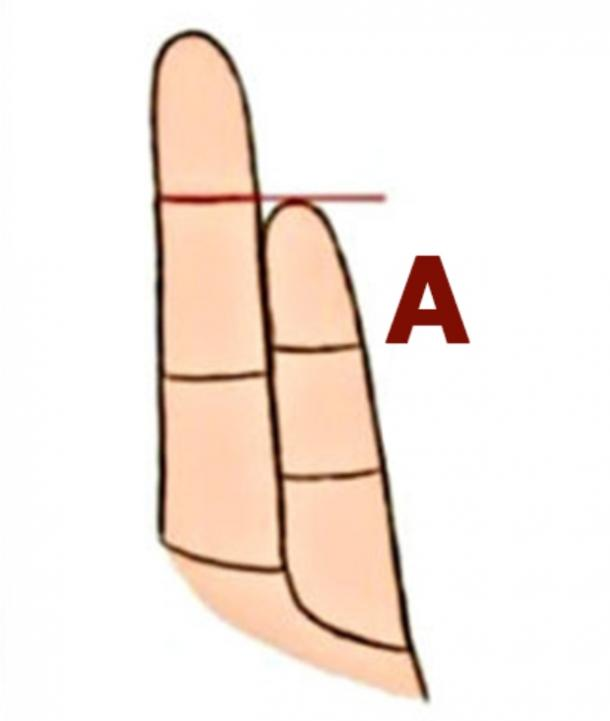 What Your Pinky Finger Length Personality Test Reveals About