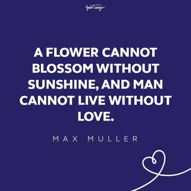 max muller love quote