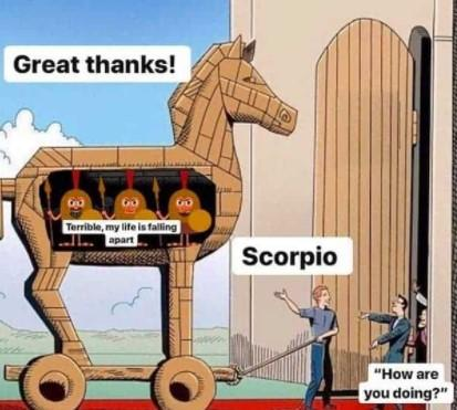 Best Scorpio Memes