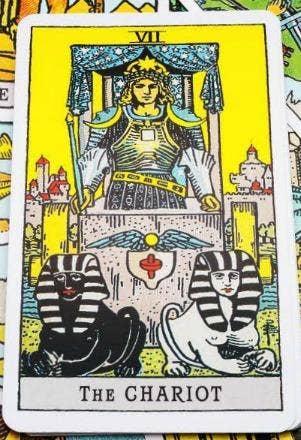 the chariot tarot card