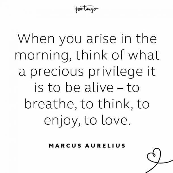 Marcus Aurelius stay together quote