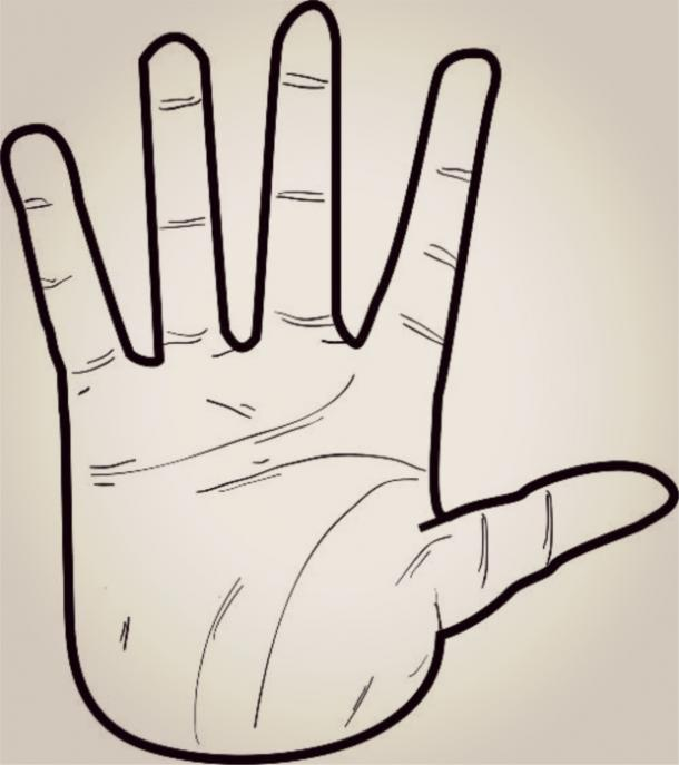 air hand shape palm reading