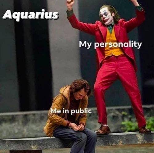 Best Aquarius Memes