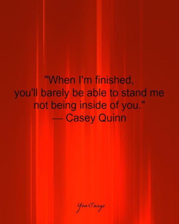 """""""When I'm finished, you'll barely be able to stand me not being inside of you."""" — Casey Quinn"""