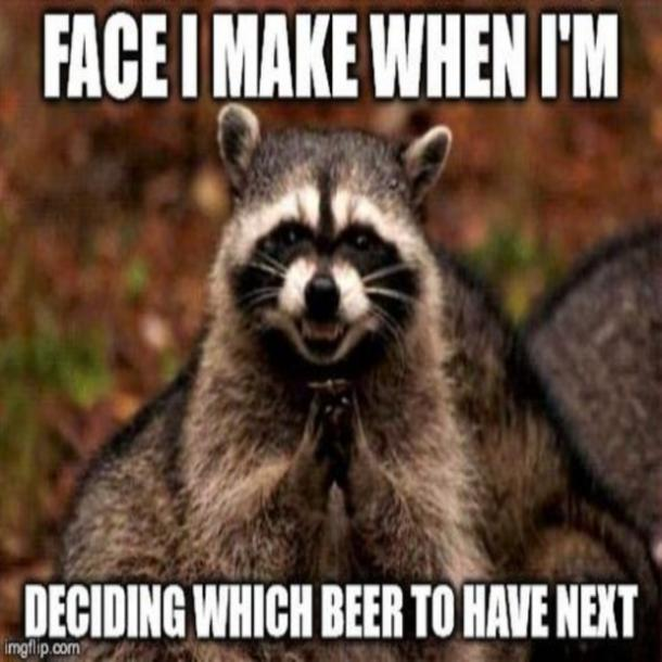 beer memes face i make when deciding what beer to have