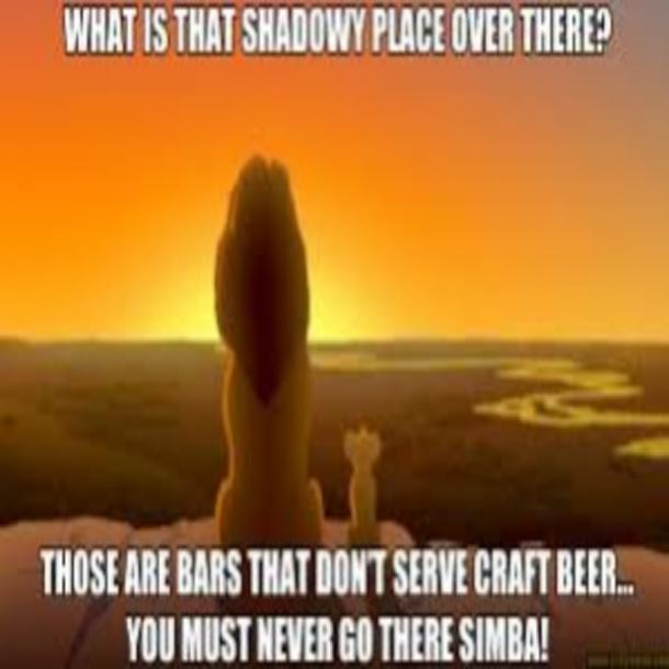 beer memes those are bars that dont serve craft beer mufasa lion king