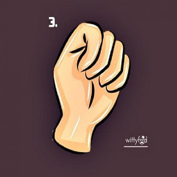 charmer fist