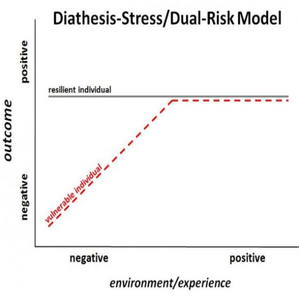 diathesis stress model