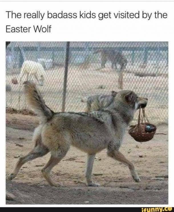 easter memes easter wolf