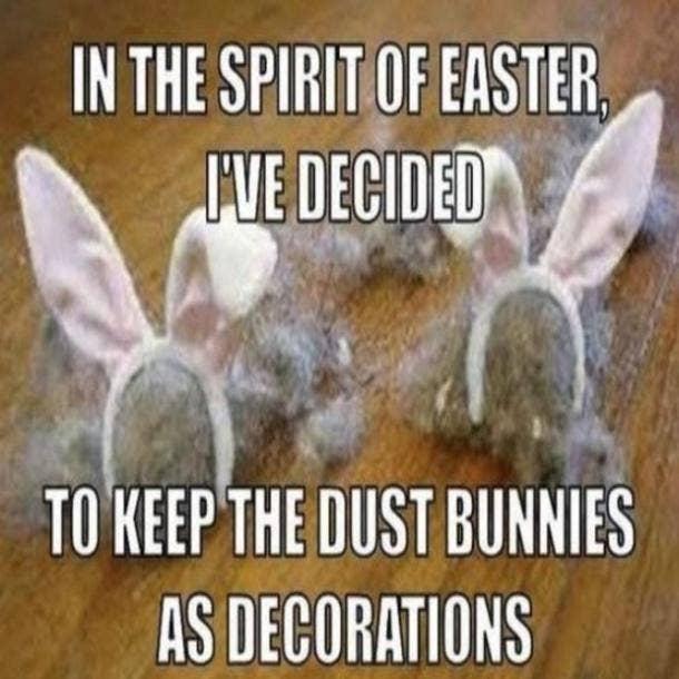 easter memes dust bunnies