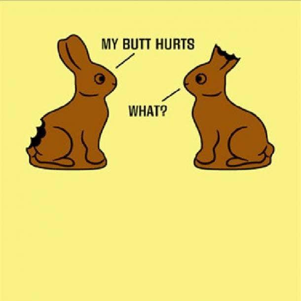 easter memes chocolate bunnies