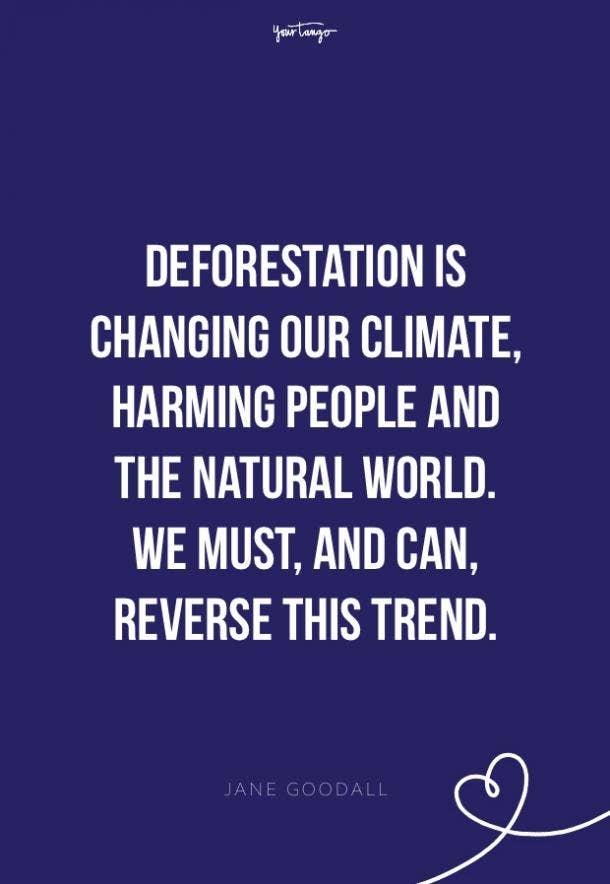 Jane Goodall environment quotes