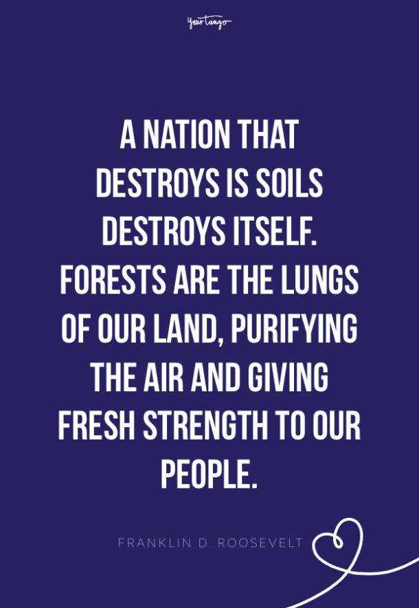 Franklin D. Roosevelt environment quotes