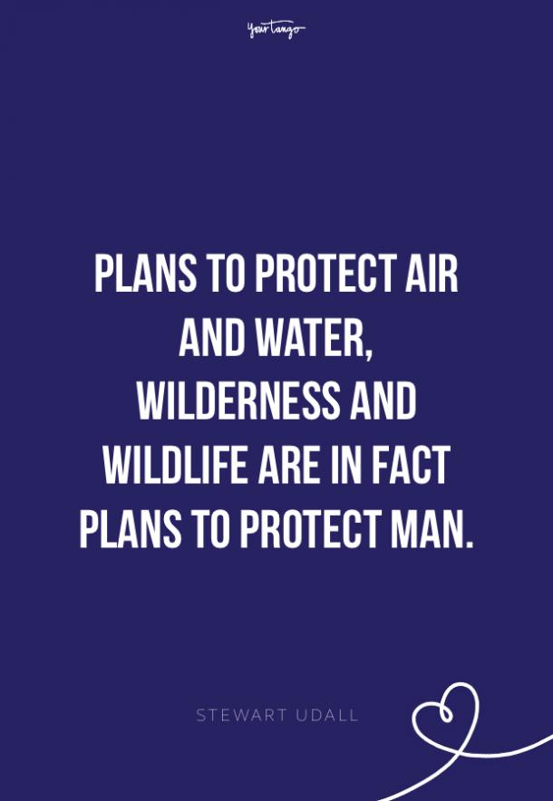 Stewart Udall environment quotes